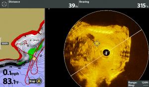 Dock, Brush, Fish Attractor - 360 Imaging